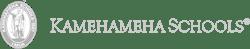 grey_customer_Kamehameha