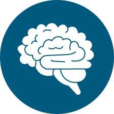 cct icon brain